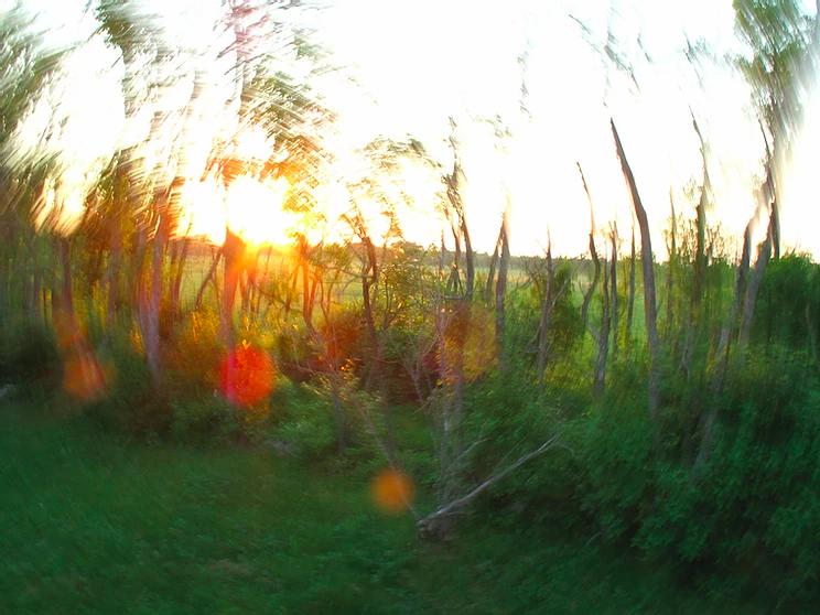 Sunrise Estonia